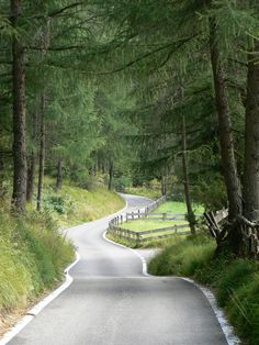 19041915970ba38aff079320a718d01d--winding-road-country-roads (2)
