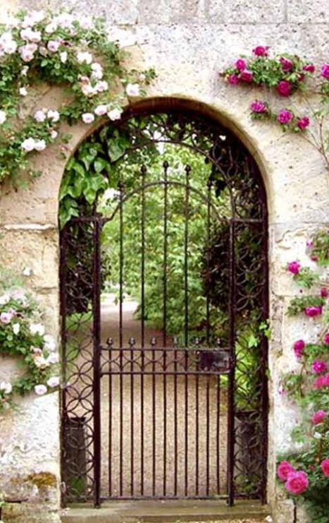 111cd117d514461033cf9c89f27759c6--metal-gates-wrought-iron-gates